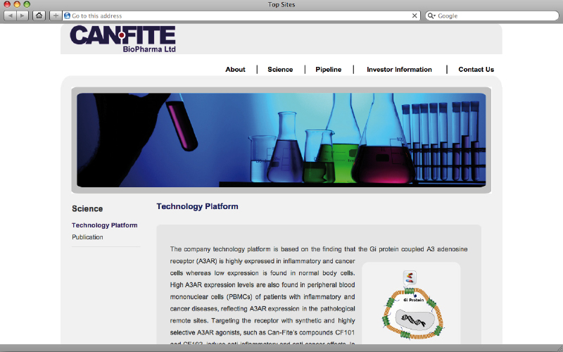 web design studio - Canfite